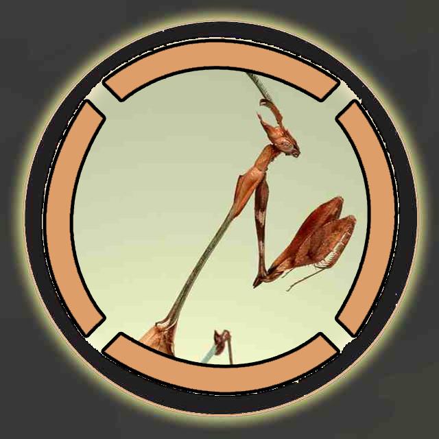 Mantis_AH_Logo.png